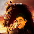 Free horse.png